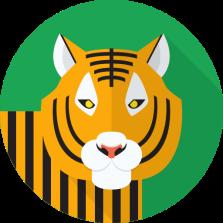 tiger512